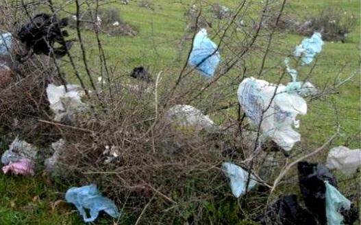 انطلاق عملية كبرى لجمع وإتلاف الأكياس البلاستيكية بمدينة البئر الجديد