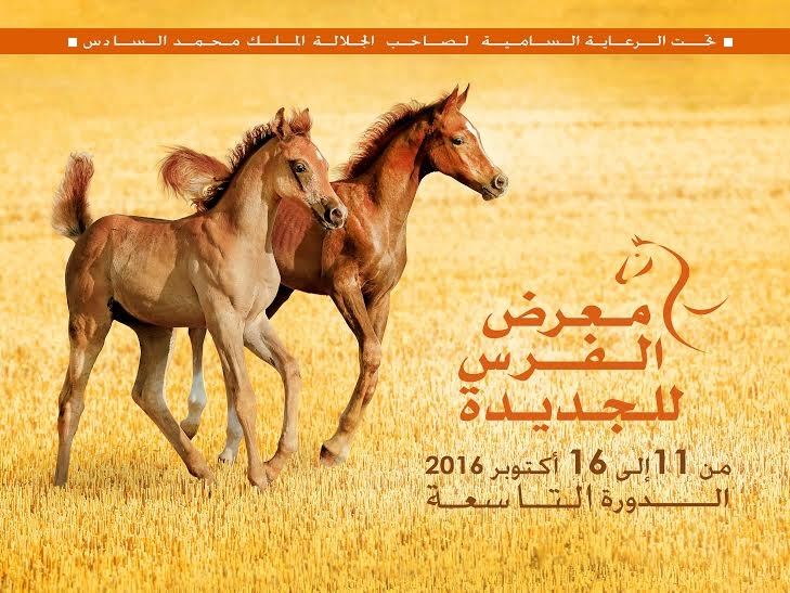 دولة الإمارات ضيف شرف الدورة التاسعة لمعرض الفرس للجديدة من 11 الى 16 أكتوبر 2016