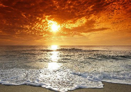 أحلام على شاطئ بحر