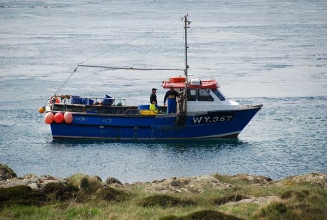 نجاة سبعة بحارة بأعجوبة بعد غرق قارب صيد كبير  بساحل الجرف الأصفر
