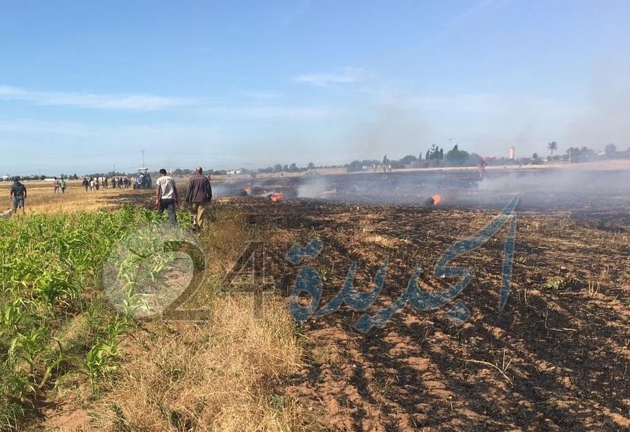 بالصور.. النيران تلتهم 3 هكتارات من الحقول الزراعية بضواحي الجديدة