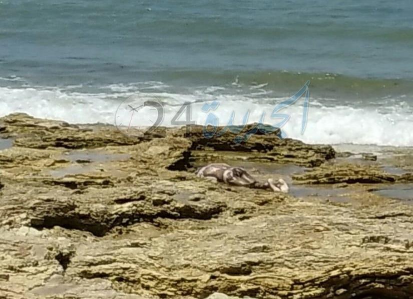 بالصورة.. مياه الشاطئ الصخري بالجديدة تلفظ جثة متحللة لمواطن أفريقي