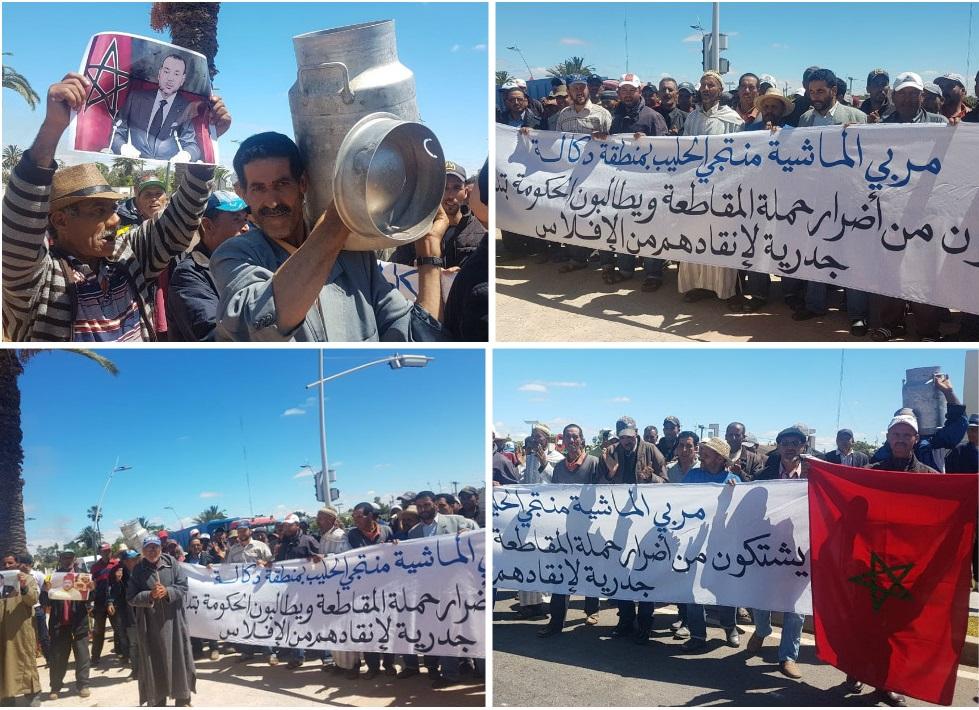 فلاحون متضررون من ''المقاطعة'' يحتجون أمام عمالة إقليم سيدي بنور + فيديو