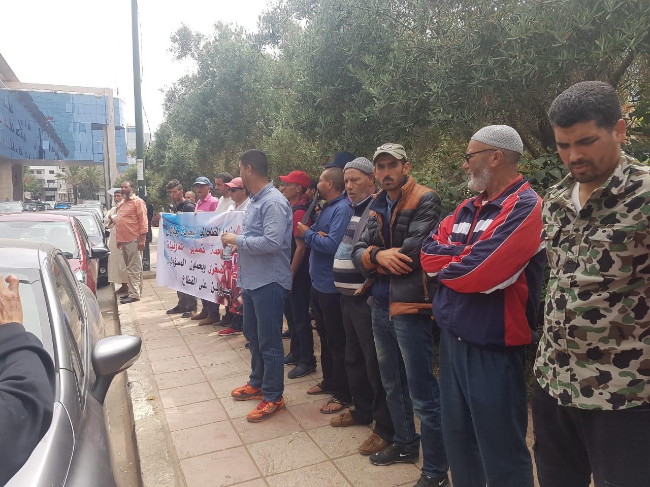 احتجاجات مهنيي قطاع الطحالب البحرية بالجديدة  تكلل بفتح حوار مع وزارة التجارة الخارجية