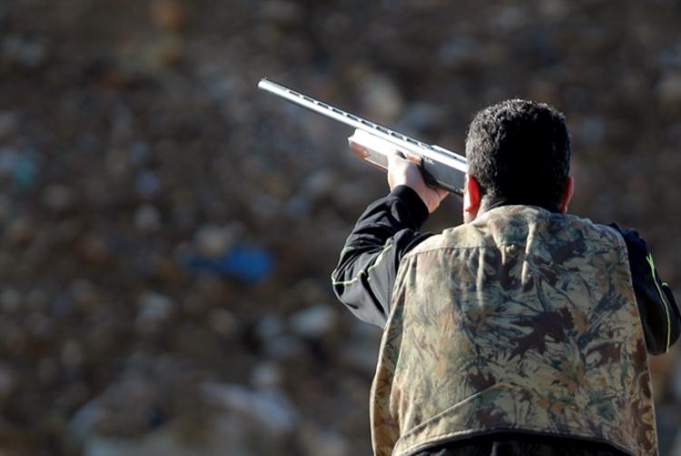 مواطن يطلق النار من بندقية صيد على كلب ضال عض سيدة بالجديدة