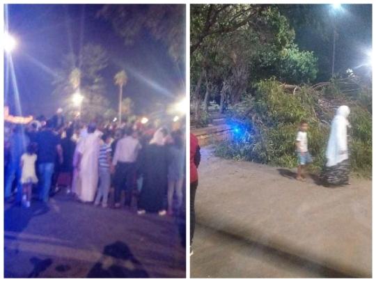 ادخال السيدة التي تعرضت لحادث سقوط شجرة الى قسم الانعاش وعامل الجديدة يدخل على الخط