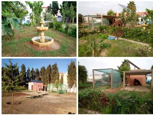 المجمع الشريف للفوسفاط يدعم مشروع المدارس الإيكولوجية باقليم الجديدة