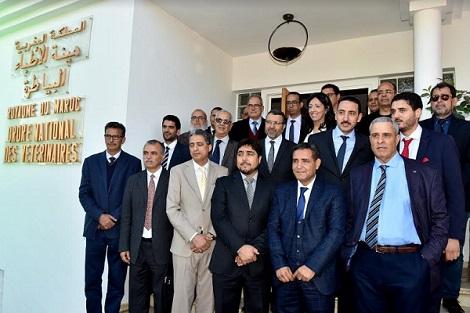 الهيئة الوطنية للأطباء البياطرة بالمغرب تدعم صندوق جائحة كورونا بمليون ومنتي ألف درهم