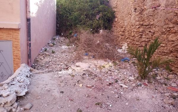 سكان حي القصبة بمدينة أزمور يشتكون من انتشار ''الطوبا'' والحشرات
