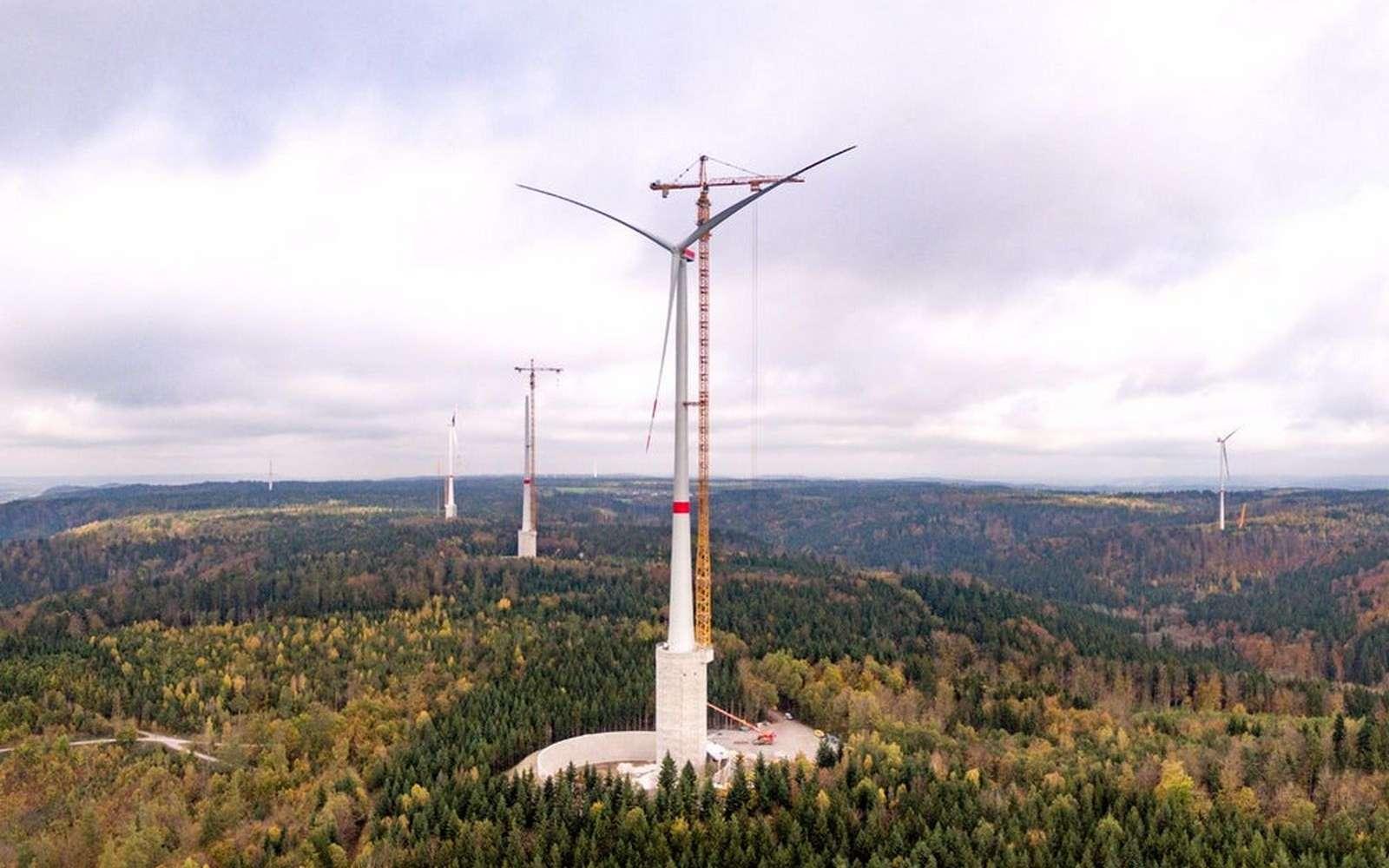 تضم أكبر عمود لانتاج الطاقة الريحية بافريقيا.. محطة الواليدية تبدأ أولى عمليات إنتاج الطاقة الكهربائية